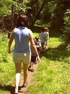 קבוצות הליכה