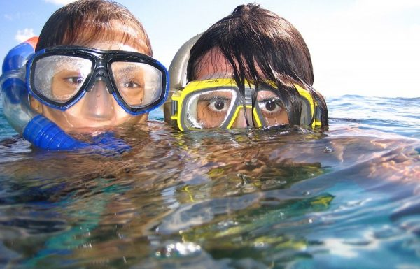 """אימון שחייה- כמו """"דג במים"""" השחיה ותרומתה"""